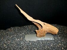 DRIFTWOOD ALL NATURAL MOUNTED FOR FISH AQUARIUMS REPTILES TANK AQUASCAPING POND