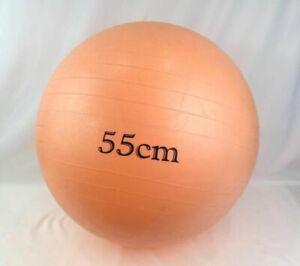 55cm PEACH Gym Medicine Ball Health Rehab Exercise Physiotherapy Balance Yoga