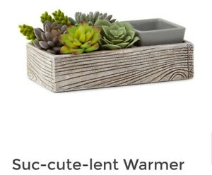 Scentsy Suc-cute-lent Warmer 2021rrp £67