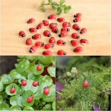 10Pcs Miniature Ladybird Ladybug Garden Ornament Figurine Fairy Dollhouse Decor