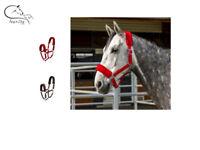 Ekkia Fleece Lined Head Collar  Pony, Cob, Full Headcollar Colours FREE DELIVERY