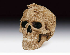 Skull with Dragon  Figurine Statue Skeleton Halloween