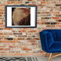 Gustav Klimt - Curled Wall Art Poster Print