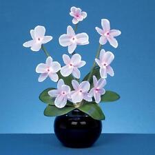 Premier LED DI NATALE FIBRE OTTICHE 40cm Light Up piante Orchidee-Bianco