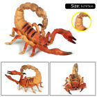 Simulation Insect Scene Mantis Spider Model Figure Props Toy Collector Kids Gift