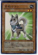 Yu-Gi-Oh Shiba-Warrior Taro YAP1-JP009 Ultra Rare Foil Mint