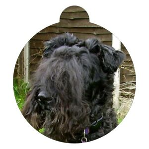 Kerry Blue Terrier Dog Breed Picture Pet ID tag