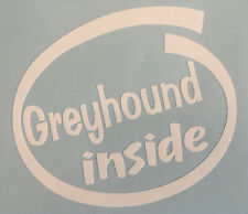 GREYHOUND INSIDE DOG ON BOARD CAR WINDOW STICKER DECAL WHITE ALL COLOURS MADE