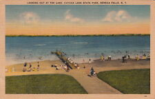 Postcard Looking Out at lake Cayuga Lake State Park Seneca Falls Ny