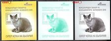 2016 Bulgaria Animals Cats Super cat British Shorthair 3 x S/S Mnh * Imperf.