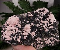 Rare Rhodochrosite with Sphalerit and Galena, Crystal, Mineral , Natural Crystal
