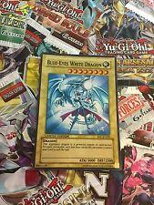 Orica Cosplay card Blue-Eyes White Dragon custom card!