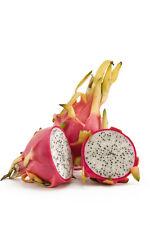 Authentic thai fresh thai dragon fruit/fruit du dragon (400g) - vendeur britannique (FR01)