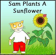 SAM PLANTS A SUNFLOWER Story Teaching Resource SPRING GROWING LIFECYCLES EYFS KS