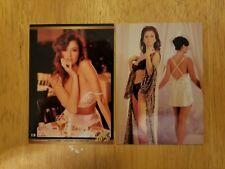New listing Ava Fabian 2 Card Lot Playboy Playmate Mystique Model Sexy!