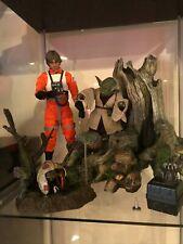 Hot Toys Sideshow 1/6 Star Wars Luke and Yoda w/ custom Dagobah