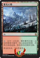 MTG KHANS OF TARKIR CHINESE WOODED FOOTHILLS X1 MINT CARD