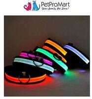 Dog Collars | LED Light Collar | LED Lighted Safety Collar | Night Safety Collar