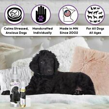 Curly-Coated Retriever Relax Dog Aromatherapy Calms Anxious, Frightened Dogs