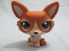 Littlest Pet Shop Dog Corgi 3567 Authentic Lps