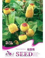 Fd1875 Spilanthes Oleracea Seed Spilanthes Garden Flower Rare ~1 Pack 30 Seeds~