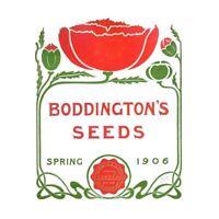 Boddingtons Seeds Spring 1906 Unframed Wall Art Print Poster Home Decor