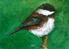 ACEO Limited Edition - Chestnut backed chickadee, Bird art, Small gift idea