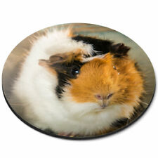 Round Mouse Mat - Cute Fluffy Guinea Pig Animals Pets Office Gift #8477
