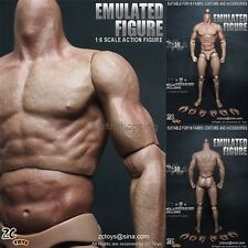 ZC Toys 1/6 Scale Muscle Muscular Action Figure Body For 12' Hot Toys Head Model