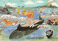Cornwall Postcard, Cornish Wildlife, Comic Seaside Funny, Joke JR4