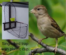 Hand made bird trap cage. Recapturing escaped birds, relocating species & aviary