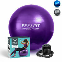 Exercise Gym Ball Swiss Pilates Yoga Core Training Stability Pump Carry Bag 65cm