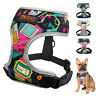 Soft Mesh Dog Harness No Pull Padded Pet Puppy Cat Vest with Fashion Pattern S-L