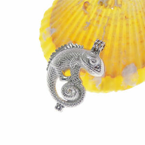 2pcs Alloy DIY Pearl Cage Silver Hollow Chameleon Locket Charms Pendants Crafts