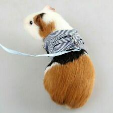 Colliers, laisses et harnais chinchilla pour petit animal et rongeur