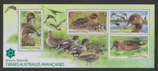 French Antarctic - 2013, Nature Reserve Pintail Bird sheet - MNH - SG MS684