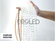 Striscia LED Strip luce fredda 6000k 5m 5050 300 LED Chip EPISTAR 6000 Lumen!