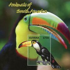 Guyana 2014 MNH Animals of South America 1v S/S I Birds Toco Toucan Stamps