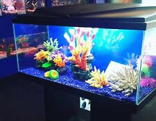 Ciano Aqua 80 LED Tropical Glass Aquarium -Inc Filter, Lights & Heater 71L BLACK