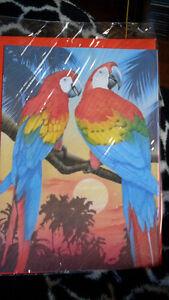 Papageien Doppel Klapp Karte mit Aramotiv & Umschlag groß