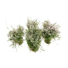 4Pcs White Cluster Flower Ground Cover Model Mini for Garden Layout Toy