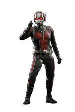Hot Toys 1/6 Marvel Ant-man MMS308 Scott Lang Figure