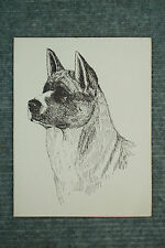 Akita Pen and Ink Stationary Cards, Note Cards, Greeting Cards. 10 pack.