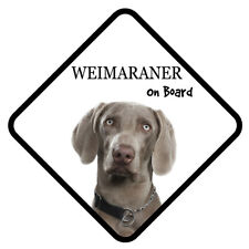 Weimaraner Dog Polished Metal Square Pill Box with 4 sections Gift