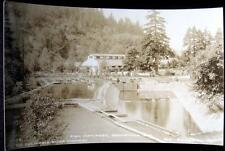 Bonneville Or ~ 1920's Columbia River Highway ~ Fish Hatchery ~ Cross Rppc