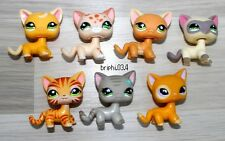 LITTLEST PETSHOP SET LOT CAT CHAT #2194 852 525 1116 1451 483 855