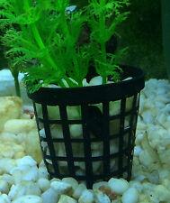 50mm NET Pot Aquarium Pack of 50 for Fish tank plants