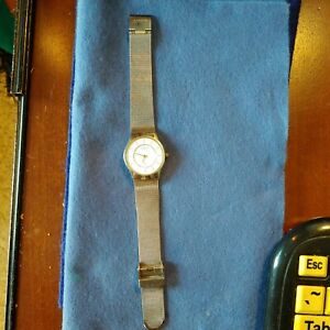 Skagen Steel Ladies Watch (Mesh Band)