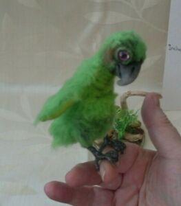 ooak soft sculpt baby parrot doll/ hand made/artist made bird/forest creature