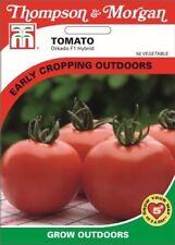 Thompson & Morgan-Hortalizas-Tomate orkado - 8 Semillas